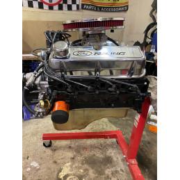V8 302CI